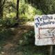 Principais pontos turísticos de Monte Verde